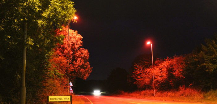 UK's first 'bat-friendly' highway crossing deployed in Worcestershire